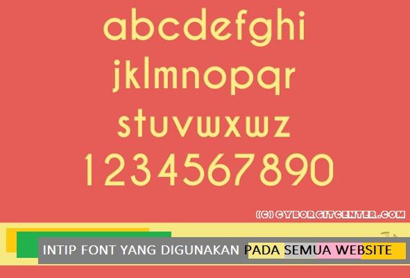 cara-mengetahui-jenis-font-pada-website